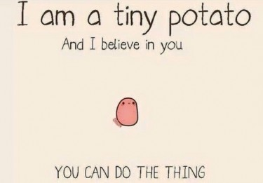 Tiny Potato Meme